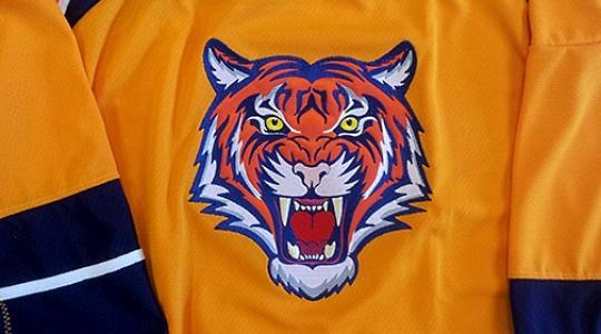 Orange cat jersey
